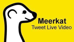 meerkat-app-tweet-videos